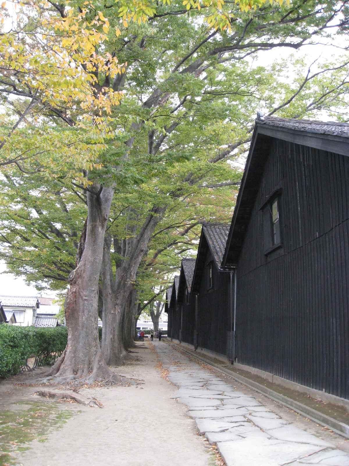 Yamagata2